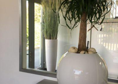 Indoor (3)